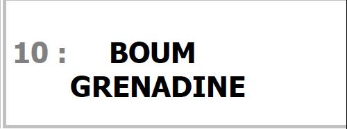 Programme BOUM GRENADINE pour SONO Magique Gold LSEP ANGERS