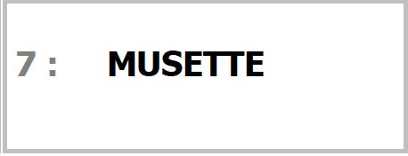 Programme MUSETTE pour SONO Magique Gold LSEP ANGERS