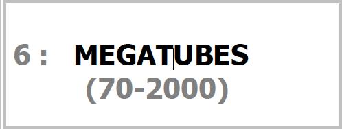 Programme MEGATUBES Pour SONO Magique Gold LSEP ANGERS